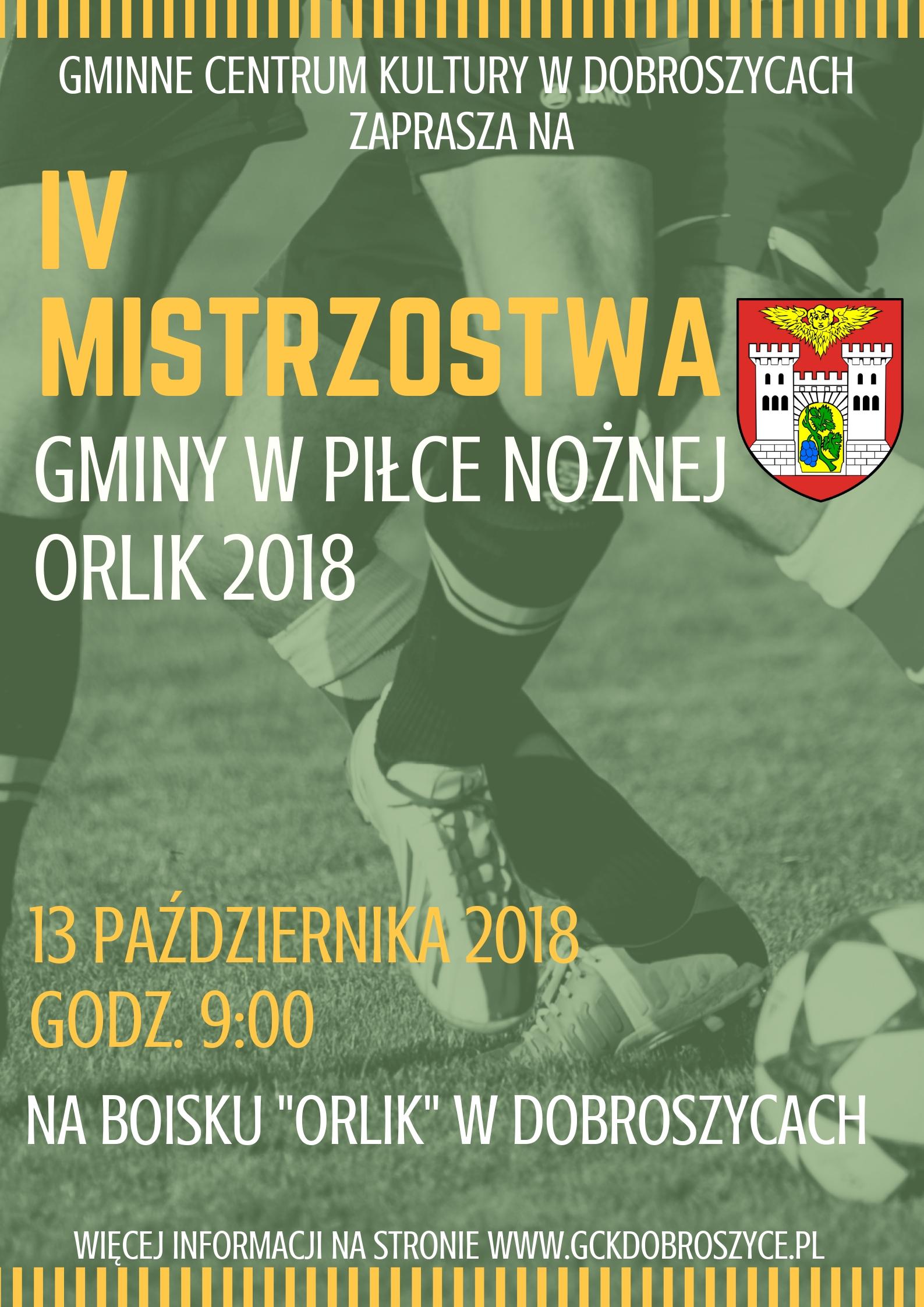 Green Tint Football Fundraising Poster